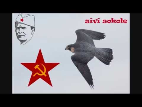 ✩Sivi Sokole - Partizanska Pjesma + Tekst Pjesme✩