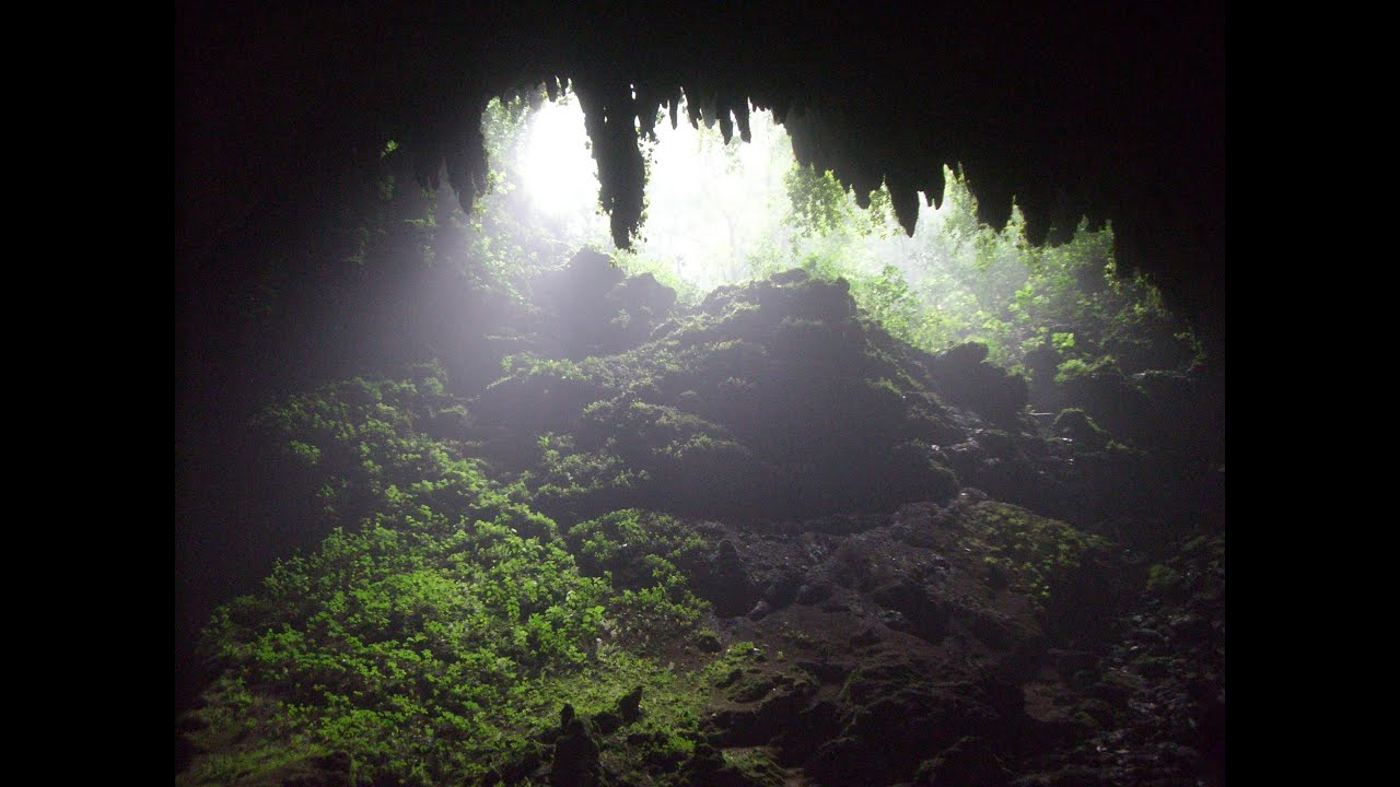 Parque De Las Cavernas, Camuy-Hatillo-Lares, Puerto Rico, North ...