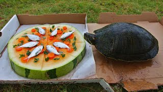 turtles-love-pizza