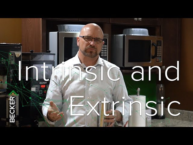 31:One - Intrinsic and Extrinsic