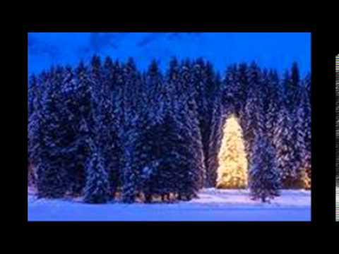 Клип Sanna Nielsen - Stilla natt