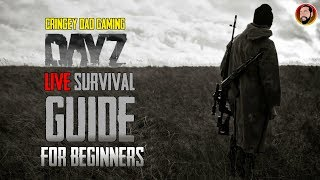 DayZ LIVE Survival Guide For Beginners With Q&A