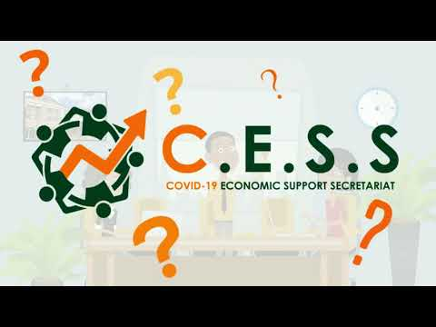 Covid - 19 Economic Support Secretariat - CESS Grenada