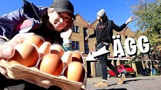Download Vi flög till London för att ÄGGA hans EX-flickväns hus Mp3 and Videos