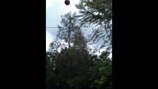 Beauty basketball shot