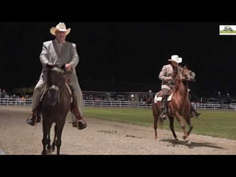 Missouri Fox Trotter World Gand Championship open 5+ 2016