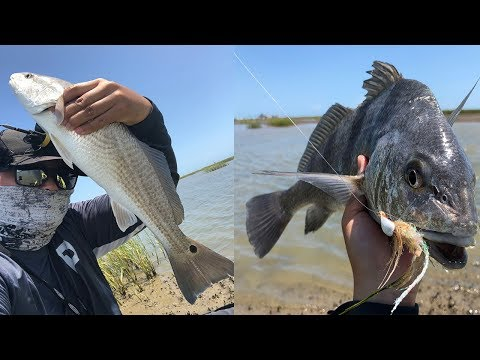 Houston, We Have A Rat Redfish Problem; EPIC DRONE Footage! Galveston Tx Fishing