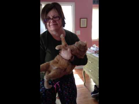 Mom Happy Dancing with Cat