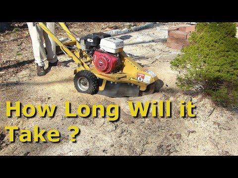 13hp stump grinder vs large stump. how long does it take