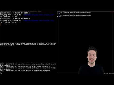 Hot-deploying Java Enterprise With WAD & Docker