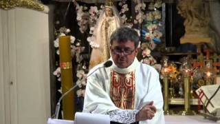 Ks. Piotr Natanek - Kazanie o Tajemnicy Mszy Świętej wg. św. Ojca Pio 20.07.2013