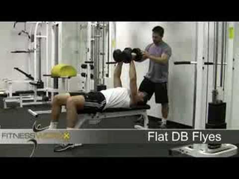 Flat DB Fly