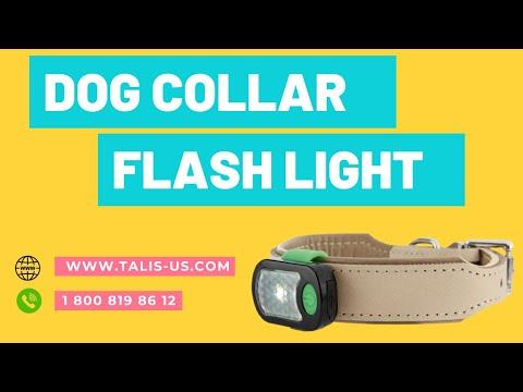 talis-us-dog-anti-bark-collar-with-flashing-light