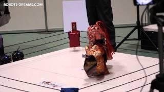 ROBOT PRO WRESTLING -Toko Toko Maru