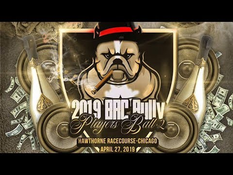 AMERICAN BULLY DOG SHOW APRIL 27TH CHICAGO,IL BRCGLOBAL