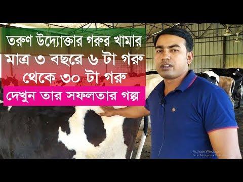 তরুণ উদ্যোক্তাদের গরুর খামার I Cow farm in bangladesh I How To Start Dairy Farm Business