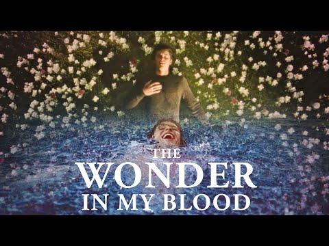 SHAWN MENDES - Wonder / In My Blood (MASHUP)