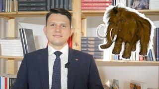 Mentzen: Korwin jest wielkim, wściekłym mamutem!