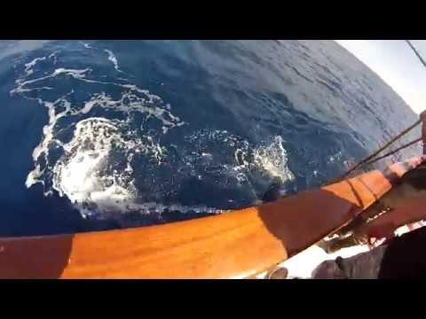 SAN DIEGO TUNA FISHING LEGEND BOAT 2 DAY JULY 20-22 2014 (alex 1st day jackpot winner)