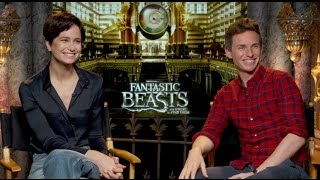 FANTASTIC BEASTS AND WHERE TO FIND THEM INTERVIEWS - Redmayne, Ezra Miller, Farrell, Waterston