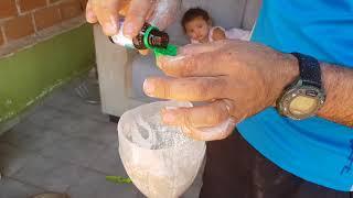 eliminar piolho de galinha, metodo facil e barato