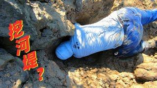 废弃河堤边发现有螃蟹踪迹,渔夫掘开大洞穴,爬进去才抓出来