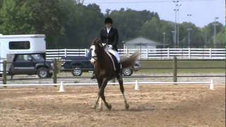 Sweet Rock Solid Dressage At The Meadow Musical Freestyle