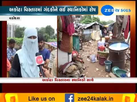 Vadodra: People Distressed Due To Filthy Land Areas After Heavy Rains