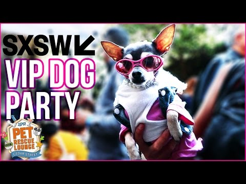 HUGE DOG PARTY: Pet Rescue SXSW Austin Event 2017 *VIP ACCESS*