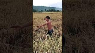 Download Lagu Dj Santai saja kawan // viral story WA mp3