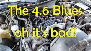 The 2v 4.6 Blues   Intake Manifold Saga Part 1 thumbnail