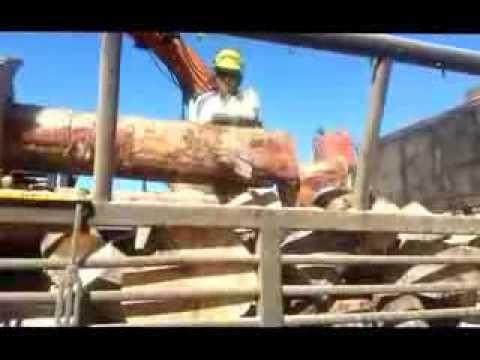 Manufacturing Topcut Firewood - Ron E Bishop Timaru NZ