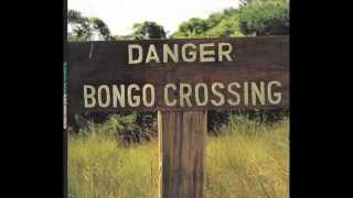 Vin Scelsa Talks Danger Bongo Crossing