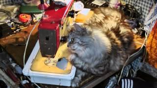 Tom opravuje šicí stroj
