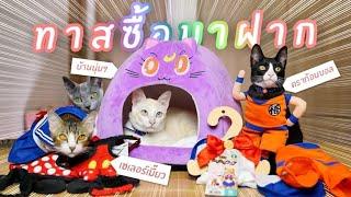 หน่านิ้รีวิว: ของฝากแมวจากญี่ปุ่น!? ft.ออสการ์