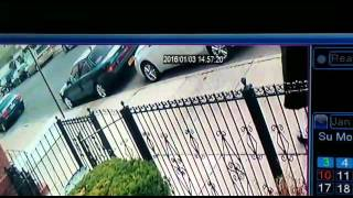 Mail theft canarsie Brooklyn Jan 3 2016