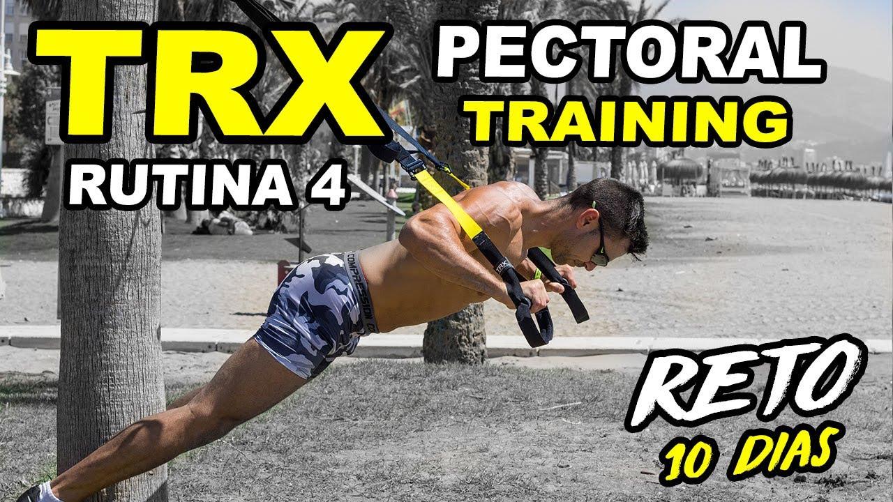ejercicios con trx videos