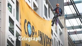 video: Animal rights campaigners scale government building