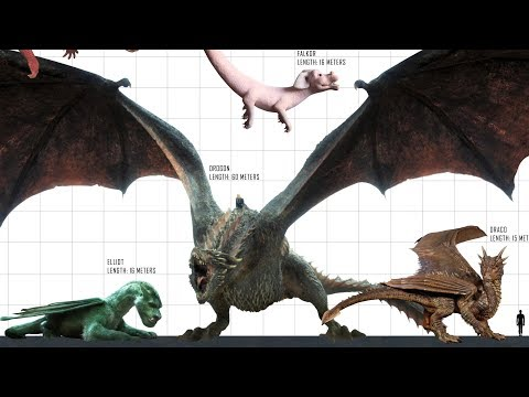 TOP 10 Largest DRAGONS