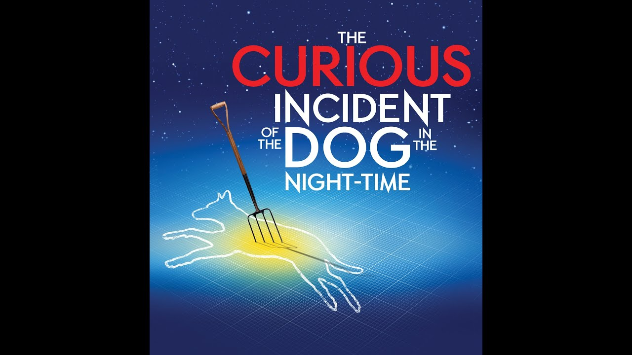 the curious ncident of the dog The curious incident of the dog in the night-time is a murder mystery novel like no other the detective, and narrator, is christopher boone the detective, and narrator, is christopher boone christopher is fifteen and has asperger's syndrome.