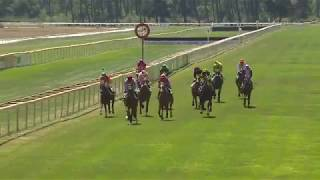 Vidéo de la course PMU PRIX AGRI 33