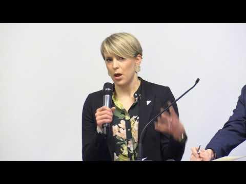 Debatt ved Atle Hamar (V), Kari Elisabeth Kaski (SV) og Espen Barth Eide (Ap)