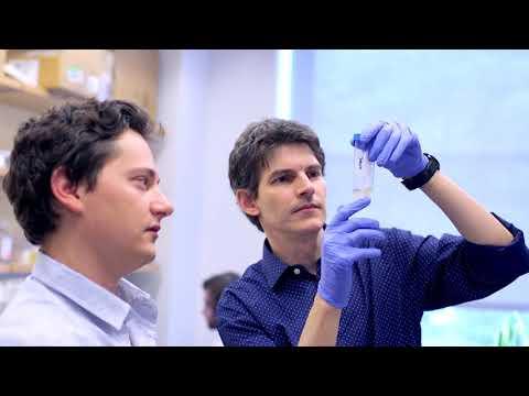 The Rockefeller Scientist - Luciano Marraffini, Ph.D.