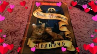 Обзор книги коты воители полночь 7 часть