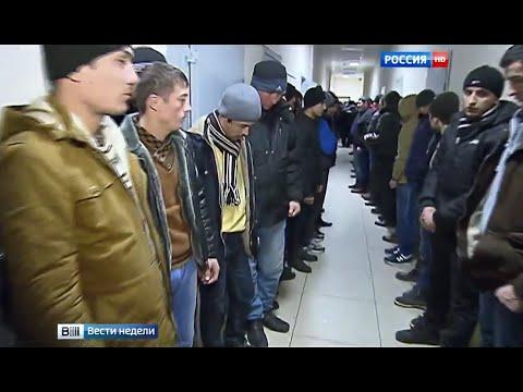 Смотреть Подмосковье принимает мигрантов по высшему разряду онлайн