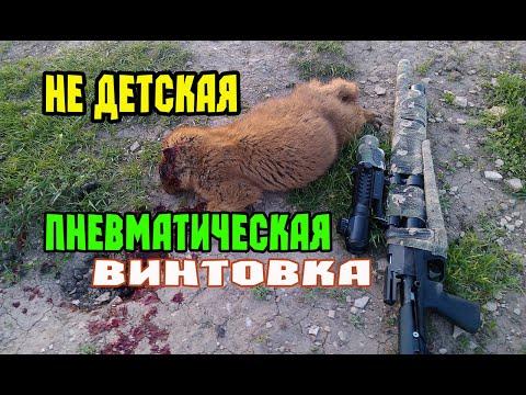 видео: Пневматическая винтовка для охоты. Пристрелка перед охотой на утку.