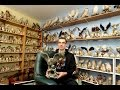 The Man With 20,000 Bird Ornaments!