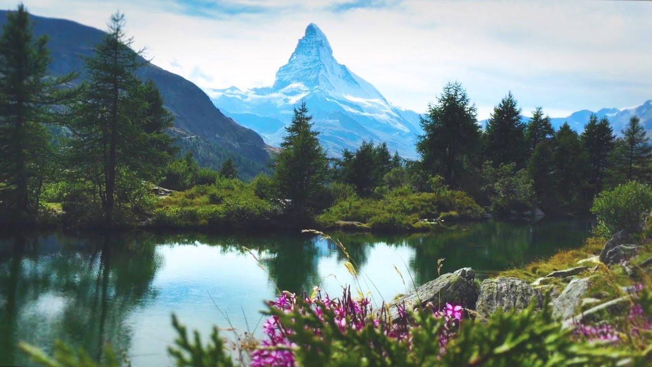 ambient alpine