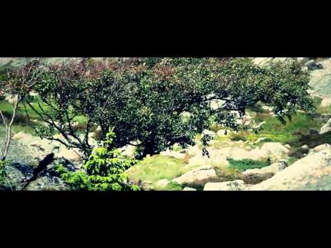 EFIX & FLINT -  Wildboy ( original mix )