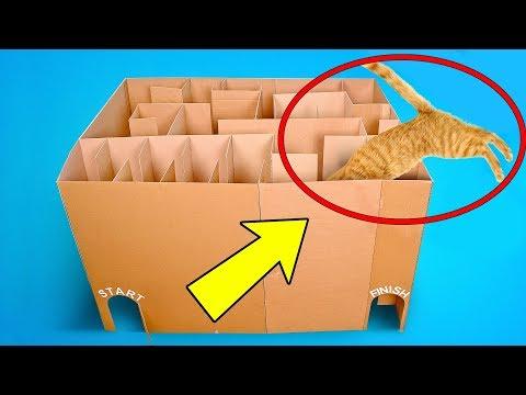 3 Superb Cardboard Crafts For Your Cat